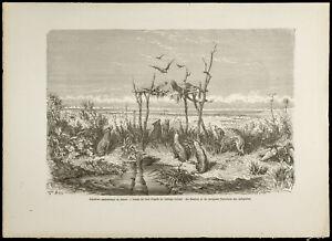 FidèLe 1860 - Australie - Sépulture Australienne Au Désert - Gravure Pour Aider à DigéRer Les Aliments Gras