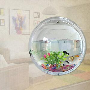 Wall Bubble Fish Tank New Betta Fish Tank Aquarium Bowl Globe Wall Hanging Mounted 0.5 .