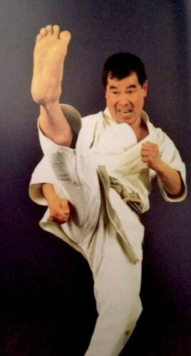 Karate Book New Wadokai Grading Syllabus Kihon Kumite Gata Kick Punching Blocks