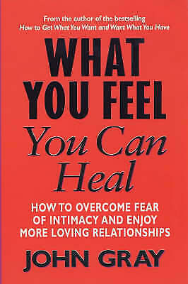 "1 of 1 - ""VERY GOOD"" What You Feel You Can Heal, Gray, John, Book"