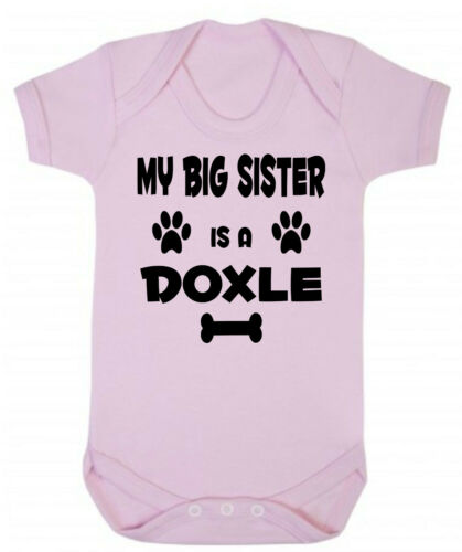 Is A Doxle Dog Blue or Pink Cotton Baby Bodysuit My Big Brother or Sister