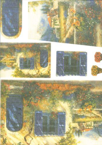 Carta di Riso Collezione 33 x 50 Arte colore hobby DECOUPAGE FIORE CASA
