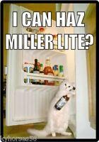 Funny Cat Humor Wanting A Miller Lite Beer Refrigerator Magnet