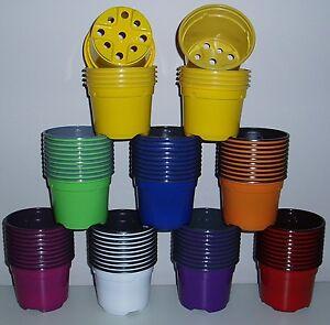 9cm multi coloured plastic plant pots lightweight multicoloured 35 image is loading 9cm multi coloured plastic plant pots lightweight multicoloured workwithnaturefo