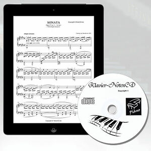 Piano-notes-Mega-collection-valeur-environ-5000-piano-clavier-amp-Ailes