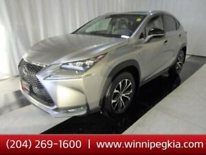 2017 Lexus NX 200t *Accident Free, Loaded!*