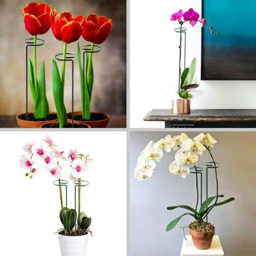 1//5//10x 18/'/' Bow Plant Flower Support for Peonies Hydrangea Strong Garden Stake