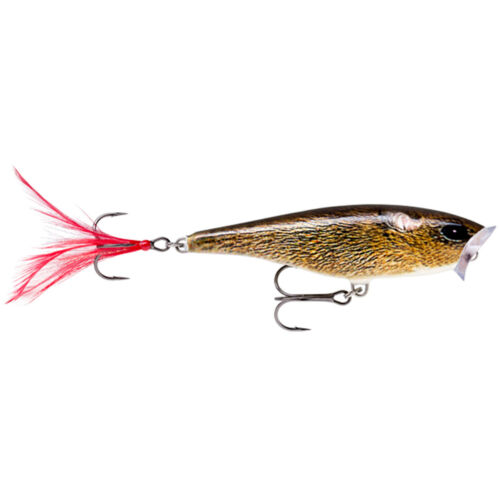 Live Field Mouse 7cm Rapala Skitter Pop Top Water