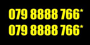 Número de teléfono móvil Oro Platino Diamante Vip negocio fácil memorable Tarjeta Sim 1