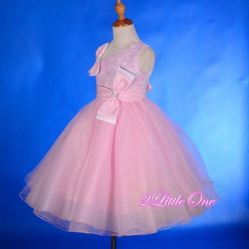 Lace Tulle Flower Girl Dresses Up Wedding Pageant Party Formal Size 18m-8 FG213