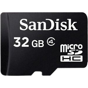 SanDisk-32GB-Micro-SD-HC-MicroSDHC-TF-Flash-Memory-Card-32-GB-GIG