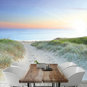 fototapete meer strand d nen weg sonnenuntergang ostsee. Black Bedroom Furniture Sets. Home Design Ideas