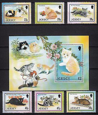 101662/ Jersey 2002 - Mi 1048/53 U. Bl. 34 - Katzen - ** - M€ 16,50 Refrescante Y Enriquecedor De La Saliva