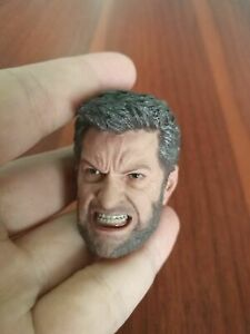 1-6-Scale-Wolverine-Head-Carving-Model-Angry-Expression-Fit-12-034-Male-Figure-Toys