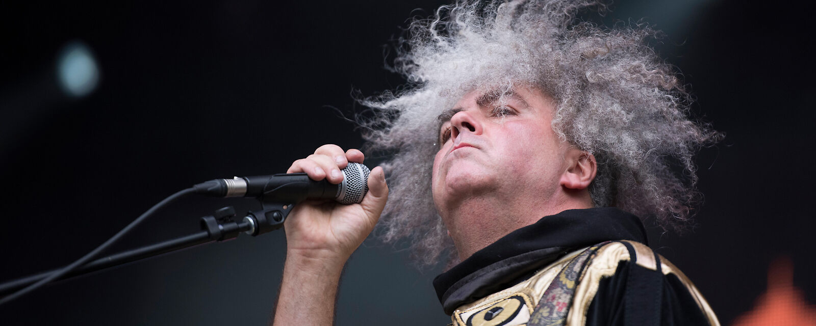 The Melvins and Boris Tickets (18+ Event)