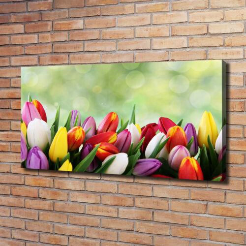 Leinwandbild Kunst-Druck 120x60 Bilder Blumen /& Pflanzen Bunte Tulpen