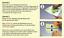 Indexbild 10 - Aufkleber 8 teiliges Set  Blüten Blüte Blumen Hibiskus Sticker Autoaufkleber 1