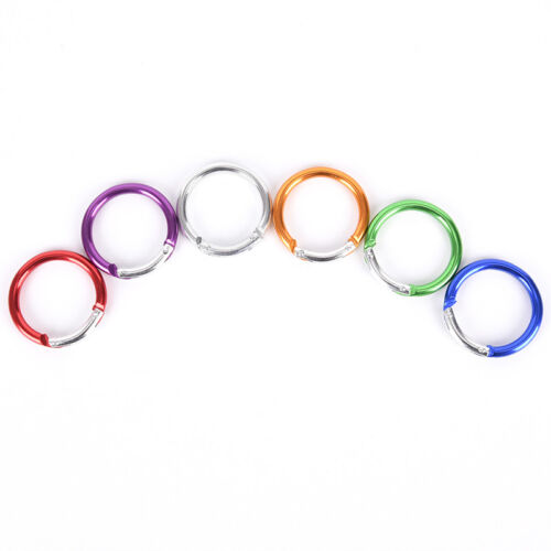 6Pcs Aluminum Alloy Clip Hanging Buckle Circle Round Carabiner Hook Keychain RG