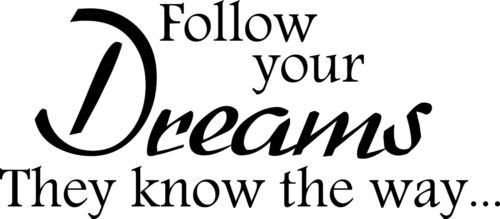FOLLOW YOUR DREAMS..WALL ART//DECAL QUOTE STICKER BEDROOM!!!!