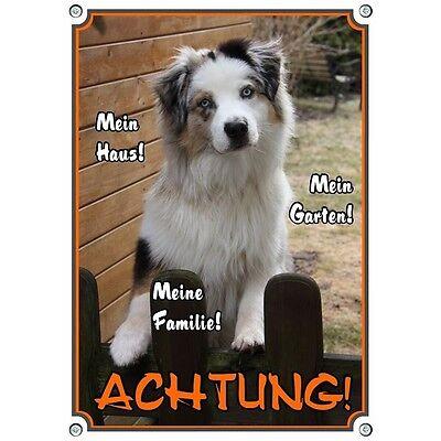 Brillant Metall Warnschild - Hundeschild Mit Australian Shepherd - Hütehund