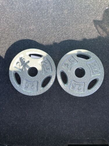 2.5 LB Weight Plates for 1 Inch Bar Set Of 2 NEW 5lb Total BRAND NEW SHIPS AWAY
