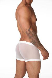 Mens-N2N-N10-See-thru-Net-Pouch-Front-Underwear-Boxers-Medium-30-34-034