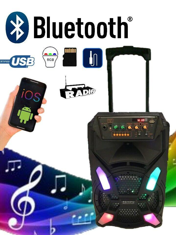 Cabinet Amplified trolley Karaoke with Microphone 2000 watt Bluetooth