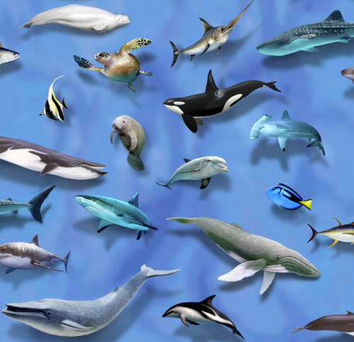 Fat Quarter World Atlas Animals Sealife Dolphin Whale Cotton Quilting Fabric