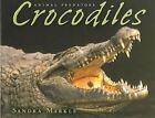 Crocodiles Animal Predators - Markle Sandra Library Binding Sep 2004