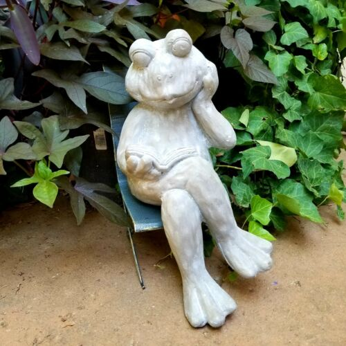 Magnesium Garden Decor Frog with Book Figurine Statue