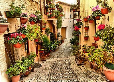 VLIES Fototapete-SPELLO UMBRIA- -Italien Mauer Allee Garten Stadt Blumen 541V