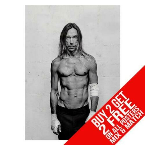 BUY 2 GET ANY 2 FREE IGGIE POP BB1 POSTER ART PRINT A4 A3 SIZE