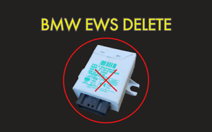 BMW MS41 MS42 MS43 *ONLY* EWS IMMOBILISER DELETE IMMO OFF SERVICE