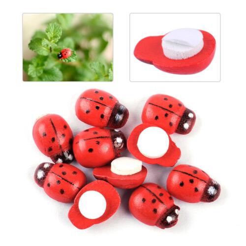 10pcs Miniature Ladybird Ladybug Fairy Garden Ornament Figurine Dollhouse Decor