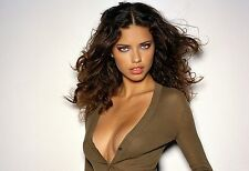 Adriana Lima Unsigned 8x10 Photo (1)
