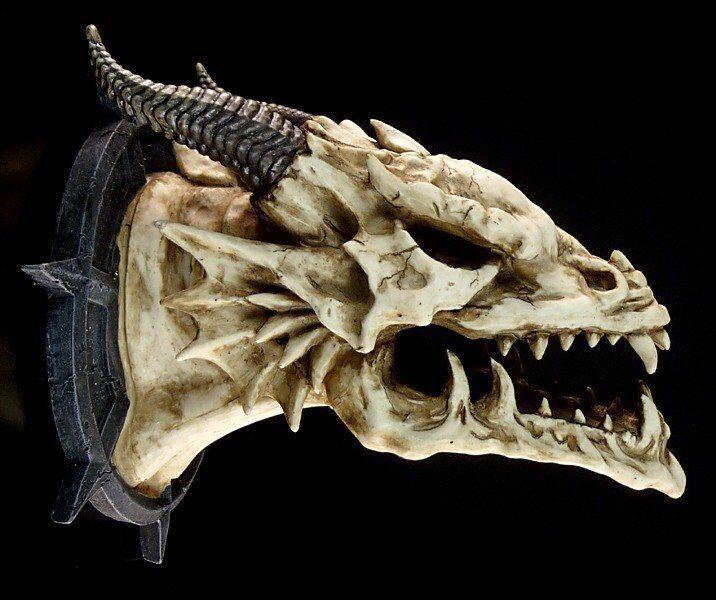 Dragones Cabeza Jabberwocky - Decoración de Pared Fantasía Figura