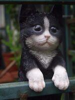 Katzenfigur Katze Welpe Puppy hängend NEUHEIT HOTANT Baby NEUHEIT