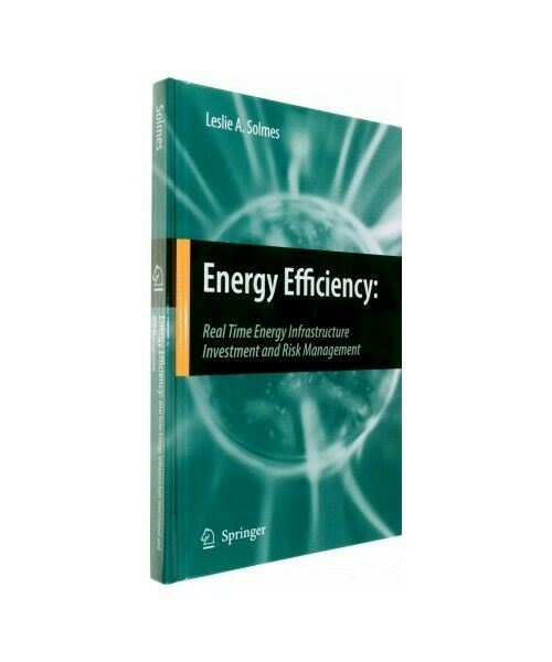 """Leslie A. Solmes """"Energy Efficiency: Real Time Energy Infrastructure Investment"""