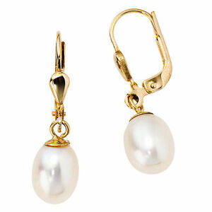 Boutons-585-Gold-Gelbgold-2-Suesswasser-Perlen-Ohrringe-Ohrhaenger-Perlenohrringe