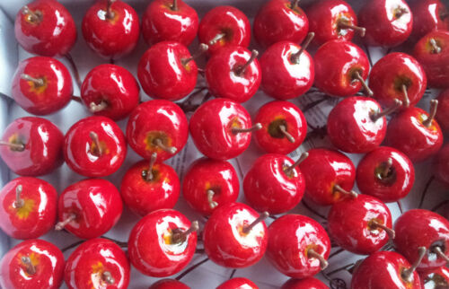 12 x pommes rouge brillant fil mannequins 2.5 cm décoration kunstobst dekofrüchte