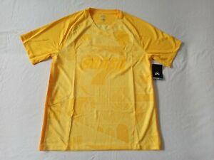 Énfasis Elaborar inquilino  Nike SB x FB Brasil Brazil Skateboard jersey shirt , L , BNWT | eBay