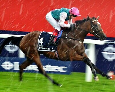 Frankie Dettori Legend NEW COLOUR Poster