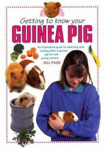 Very-Good-Getting-to-Know-Your-Guinea-Pig-Paperback-Gill-Page-1842861158