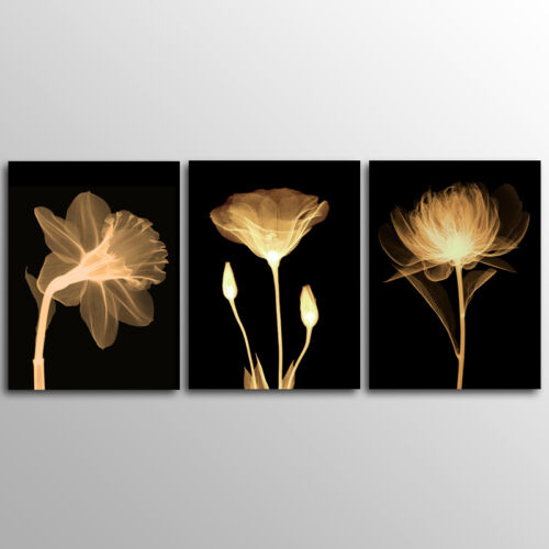 No Frame 3 Panels Plant  Wall  Art  Canvas Print  Large Size canvas painting