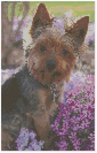 Yorkshire TERRIER DOG CROSS STITCH KIT by florashell