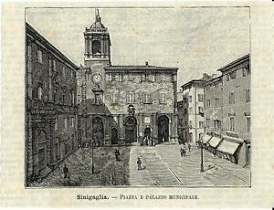 Stampa antica SENIGALLIA Piazza e Palazzo Municipale Ancona 1891 Antique print