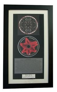 SHINEDOWN-Amaryllis-CLASSIC-CD-Album-GALLERY-QUALITY-FRAMED-EXPRESS-GLOBAL-SHIP
