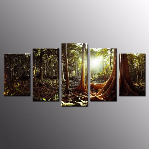 FRAMED Home Wall Art Decor Light In Woods Stretched Giclee Canvas Print Art5pcs
