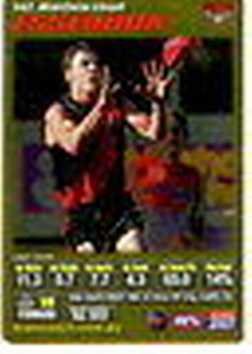 2007 AFL m Coach Gold Card G142 Matthew Lloyd