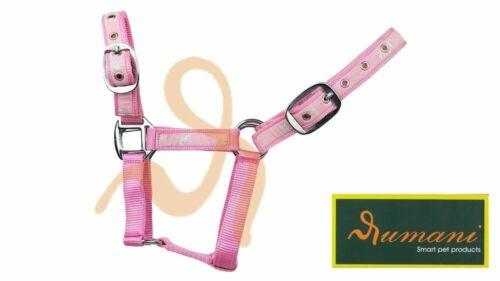 Headstall Iron Hardware Horse Print Ribbon Decoration Rumani PP Horse Halter